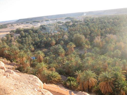 صور بني عباس بولاية بشار جنوب الجزائر Photo%20desert%20tunisie%20106