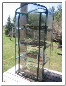 Jack's lil greenhouse