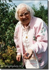 Gran picking raspberries and blueberries