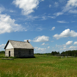 Old Wisconsin by Timothy Hatch - Landscapes Prairies, Meadows & Fields ( wisconsin, grass, cottage, meadow, summer,  )