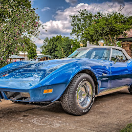 Blue Vette by Ron Meyers - Transportation Automobiles