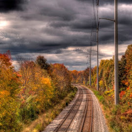 Fall Tracks by Jen Pezzotti - Transportation Railway Tracks