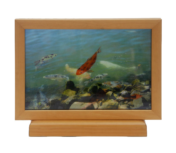 Orange Fish with Rocks <br> 9.5 x 12 x 3 in