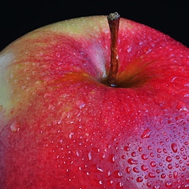 Apple by Eugenija Seinauskiene - Food & Drink Fruits & Vegetables (  )