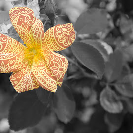 tangled flower by Desmond Torrez - Digital Art Things ( nature, edit digital photography flower )
