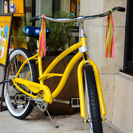 by Tim Williams - Transportation Bicycles