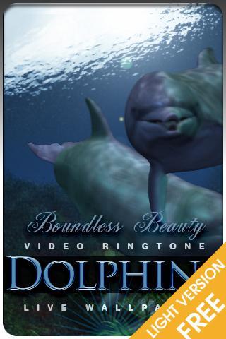 海豚視頻鈴聲