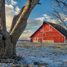 Red Barn, Weld County by Gregg Lowrimore - Buildings & Architecture Other Exteriors ( weld county, red, barn, co rd 7, rural )
