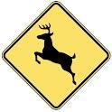 HD Deer Calls PRO icon