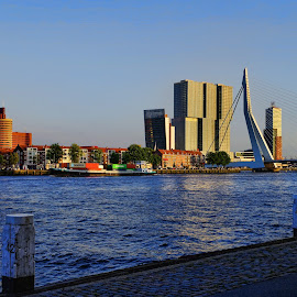 Rotterdam II by Stefano Landenna - City,  Street & Park  Skylines ( rotterdam, skyscrapers, holland, bridge, netherlands )