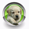 Homeopathy For Dogs icon