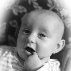 by Neil Harvell - Babies & Children Babies