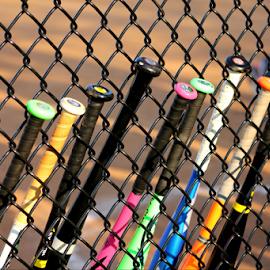 Going Bats by Darlene Lankford Honeycutt - Abstract Patterns ( abstract, fence, pattern, deez, sports, dl honeycutt, baseball bats, equipment )