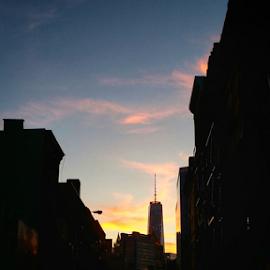 Goodnight Manhattan by Todd Reynolds - Landscapes Travel