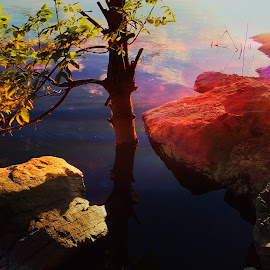 Sundown by the river....... by Janete Adamowski - Nature Up Close Water ( photography )