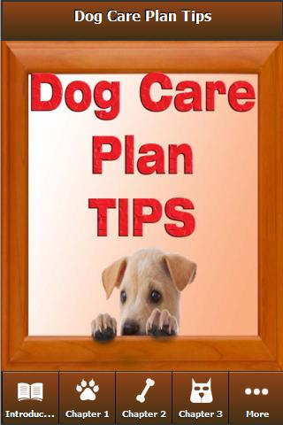 How to Care of Your Dogs