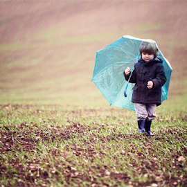 Rainy Day Bunny by Chinchilla  Photography - Babies & Children Toddlers ( england, rainy day, little boy, umbrella, outdoors, toddler, cute )