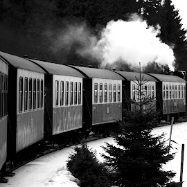 Old train at the top of the mountain ... by Georgios Kalogeropoulos - Transportation Trains ( black and white, snow, train, smoke, old train )