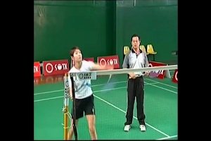 Screenshot of Badminton Skill