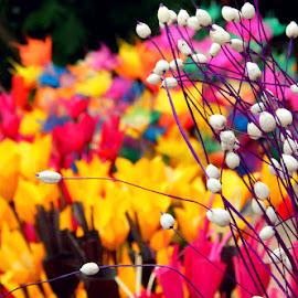 untitled by Debarpan Naha - Abstract Macro ( macro, nature, fake flowers, beauty, daylight )