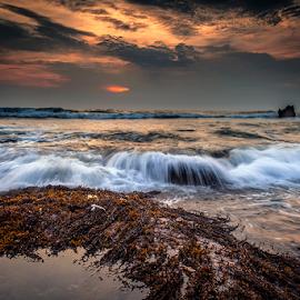 Last Light by Rio Tanusudiro - Landscapes Beaches ( bali, coral, sunset, rock, beach, motion, light )