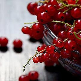 currant by Alka Smile - Food & Drink Fruits & Vegetables