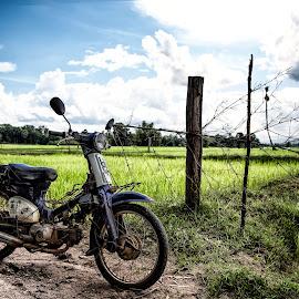 Sexy Motorbike by Sedthakun Soi - Transportation Motorcycles