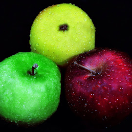 Apples by Dina Priv - Food & Drink Fruits & Vegetables