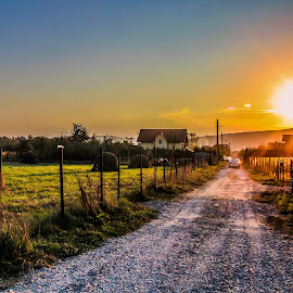 Path finder by Camelia Cami - Landscapes Prairies, Meadows & Fields ( field, sunset, hay, path, romania, nature, landscape )