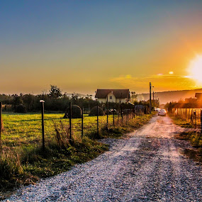 Path finder by Camelia Cami - Landscapes Prairies, Meadows & Fields ( field, sunset, hay, path, romania, nature, landscape,  )