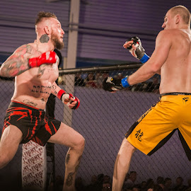 Fight UK 11 - 002 by Russell Dixon - Sports & Fitness Boxing ( fitness, wrestling, thai boxing, muay thai, boxing, mixed martial arts, mma, health, athlete, wrestle, kickboxing )