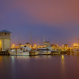 Foggy Evening in the Harbor by Jeannie Meyer - Transportation Boats ( gulfport, purple, blue, fog, boats, pink, mississippi,  )