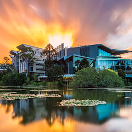 University of Queensland by Yun Sheng Yip - Landscapes Sunsets & Sunrises ( queensland, reflection, universityofqueensland, sunset, australia, brisbane, uq )