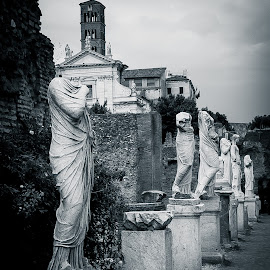 Roman Statues in the Courtyard by Dale Mellor - Buildings & Architecture Statues & Monuments ( colosseum, rome, statues, roman, italy,  )
