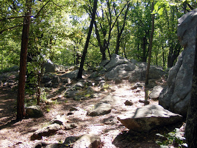 Rocky Path descending Big Kennesaw
