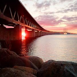 Sunset behind Öresundsbron.The bridge between Sweden and Danmark by Lisa von Steijern - Buildings & Architecture Bridges & Suspended Structures