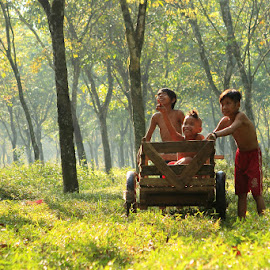 Three Friends by Albert Huwa - Babies & Children Child Portraits ( teenage children play cart forest village rumpin bogor west java indonesia )