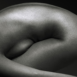 Embryo by Maxim Malevich - Nudes & Boudoir Artistic Nude ( abstract, erotic, body, nude, black and white, female, woman, artistic nude, skin )