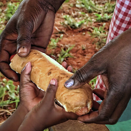 Helping by Philip McKibbin - People Body Parts ( child, roll, scheme, hands, bread, assist, feed, africa, hungry )