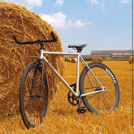 Another bike pic..@quellabikes by Joseph Stone - Transportation Bicycles ( bike, bicycle, new, quella, quellabicycle, quellabikes, field, newbike, haybales, uk, edit, gold, jw, berrr, kings, neco, quando )