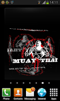 Screenshot of 3D Muay Thai Live Wallpaper