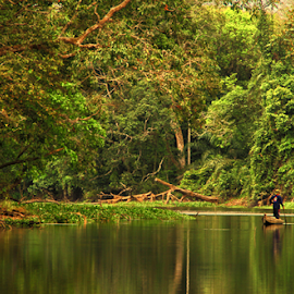 Lake Forest Tanjung Putus by Yogi Brima - Landscapes Forests ( lake forest tanjung putus )