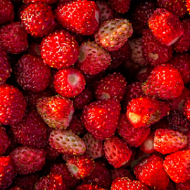 Strawberries by Stanislav Horaček - Food & Drink Fruits & Vegetables
