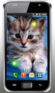 Kittens Voices live wallpaper - screenshot