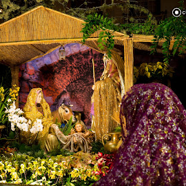 Presepio by Cicero Castro - News & Events World Events ( madeira island, presepio, crib )