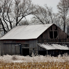 Old Barn  by Ann Overhulse - Buildings & Architecture Decaying & Abandoned