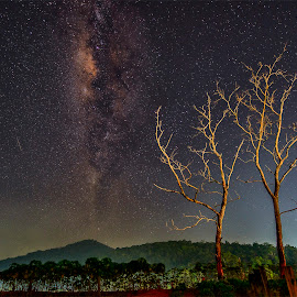 *** by Low Jian Shien - Landscapes Starscapes ( landscape, milky way )