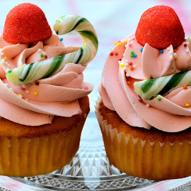 Cucpcakes by Heather Aplin - Food & Drink Candy & Dessert ( sweet, cupcakes, candy, cane, icing, pink, sugar )