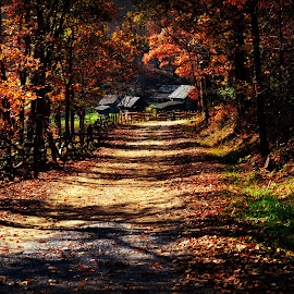 Walk to Old Farm ! by Linda Blevins - Buildings & Architecture Other Exteriors ( farm, fence, cabin, fall, trail, trees, beauty, leaves )