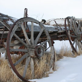 Wagon by Mark  R.  Worden - Transportation Other ( wagon wheel, ghost town, wagon, old west, bannock state park )